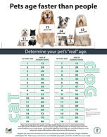 Pets Age Faster than People poster
